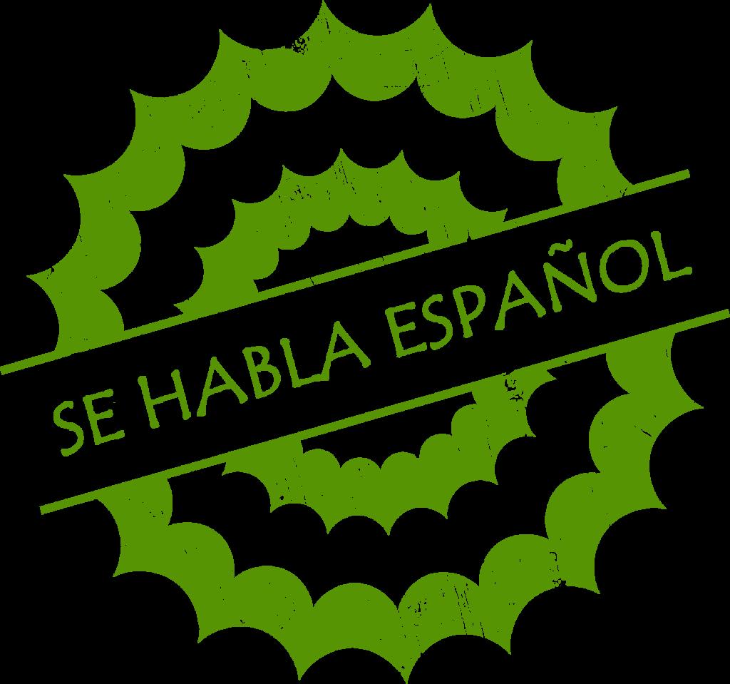 Se Habla Espanol Icon_green